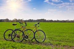 2 велосипеда в поле Стоковое Изображение RF