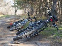 2 велосипеда в древесинах Стоковые Изображения