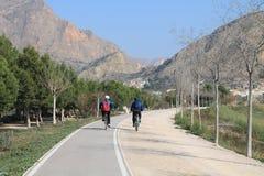 2 велосипеда езды людей Стоковые Фотографии RF