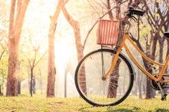 Велосипед дальше Стоковое Изображение