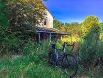 Велосипед в кустарниках Стоковые Фотографии RF