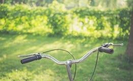 Велосипед в парке на солнечный день Стоковые Изображения