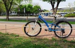 Велосипед в парке Стоковое фото RF