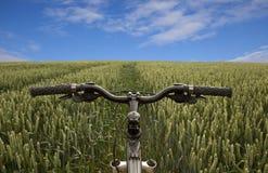 Велосипед в поле Стоковая Фотография RF