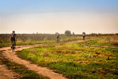 Велосипед в Румынии, к берегу Дуная, через ниву солнцецвета Стоковое Изображение