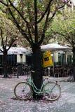 Велосипед в Франкфурте-на-Майне Стоковое Изображение RF