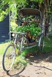 Велосипед года сбора винограда 3, который катят Стоковые Фотографии RF