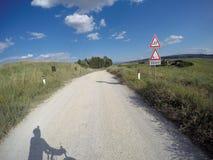Велосипед гравия вокруг Сиены стоковое фото rf