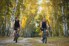 2 велосипедиста горы ехать велосипед в лесе Стоковые Фотографии RF