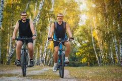 2 велосипедиста горы ехать велосипед в лесе Стоковые Изображения RF