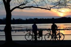 2 велосипедиста на заходе солнца Стоковое Изображение RF