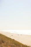 2 велосипедиста на пляже около моря Стоковая Фотография