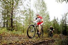 2 велосипедиста спортсменов людей едут вдоль следа леса Стоковое Изображение RF