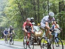 Велосипедисты взбираясь Col du Platzerwasel - Тур-де-Франс 2014 Стоковое Фото