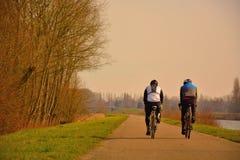 Велосипедисты в природе Стоковое Изображение