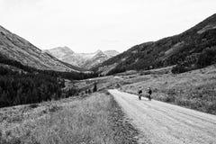 Велосипедисты горы едут в горы Стоковое Фото