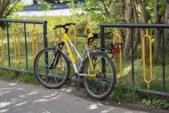 Велосипедисты на загородке Стоковые Фото