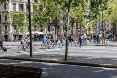 Велосипедисты пересекая crosswalk в Барселоне Стоковое фото RF