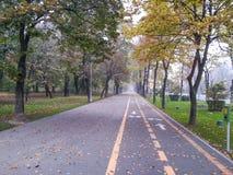 Велосипедисты тротуара и следа в Бухаресте Стоковое Изображение