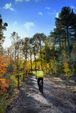 Велосипедист в лесе осени Стоковые Изображения