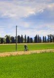 Велосипедист в заповеднике реки Isonzo Стоковое Изображение