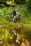 Велосипедист горы на следах Стоковое фото RF