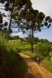 Велосипедист горы Стоковые Фотографии RF