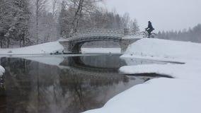 Велосипедист зимы акции видеоматериалы