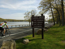 Велосипедист наслаждаясь ездой в парке штата Harriman, Нью-Йорке, США Стоковое Изображение RF