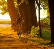 Велосипедист на заходе солнца Стоковые Изображения RF