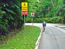 Велосипедист дороги Стоковое фото RF