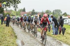 Велосипедист Lars Bak на мощенной булыжником дороге - Тур-де-Франс 2014 Стоковое фото RF