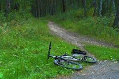 Велосипед и укладывайте рюкзак лежать на следе леса Стоковое фото RF