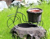 Велосипед как элемент дизайна parkland Стоковое Изображение RF