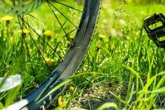 Велосипед катит внутри траву Стоковая Фотография