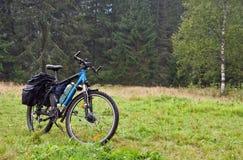 Велосипед на предпосылке леса Стоковая Фотография