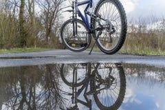 Велосипед на следе леса Стоковые Фотографии RF