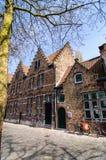 Велосипед, дома Брюгге и тень безлистного дерева Стоковые Фото