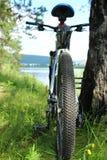 Велосипед стоит около дерева на речном береге Стоковое Фото