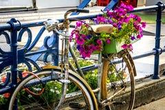 Велосипед с цветками Стоковая Фотография