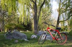 Велосипеды в природе Стоковая Фотография