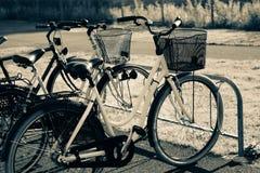 Велосипеды в шкафах велосипеда Стоковые Изображения