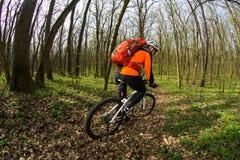 Велосипеды человека в зеленом лесе Стоковое Фото