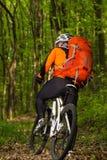 Велосипеды человека в зеленом лесе Стоковые Фото
