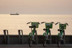 Велосипеды для ренты в Батуми Стоковые Изображения
