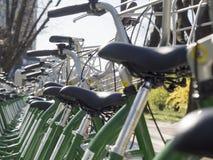 Велосипеды для ренты Стоковая Фотография