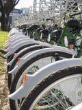 Велосипеды для ренты Стоковое Изображение