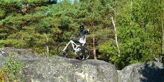 Велосипед moutain молодого человека практикуя в лесе стоковое изображение rf