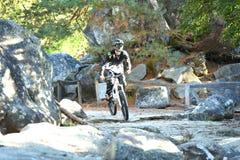 Велосипед moutain молодого человека практикуя в лесе Стоковые Изображения RF