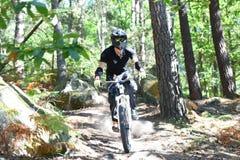 Велосипед moutain молодого человека практикуя в лесе Стоковые Изображения